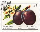 Sharjah and Depedencies - Air mail